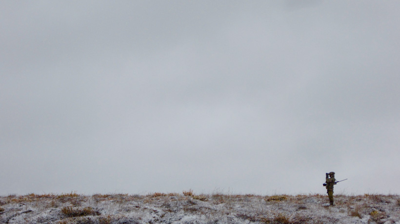 Glassing the tundra for mature bull caribou
