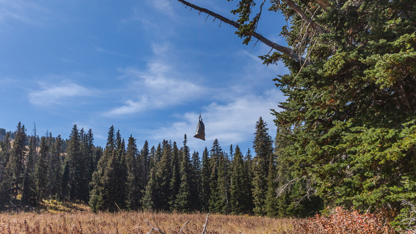 Hanging meat in the Wyoming backcountry