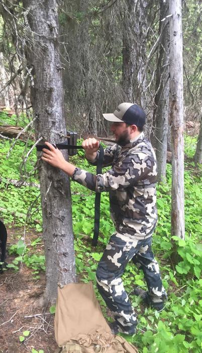 Hanging trail cameras for Washington elk