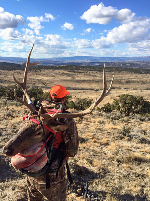 Hannah Kyceks brother packing out a Colorado elk