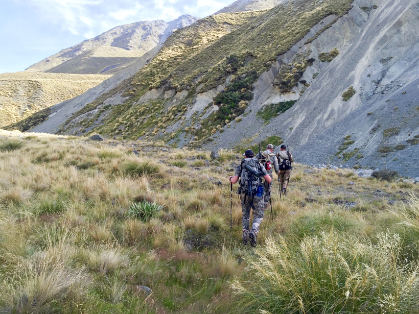Hiking creek beds in pursuit of trophy tahr