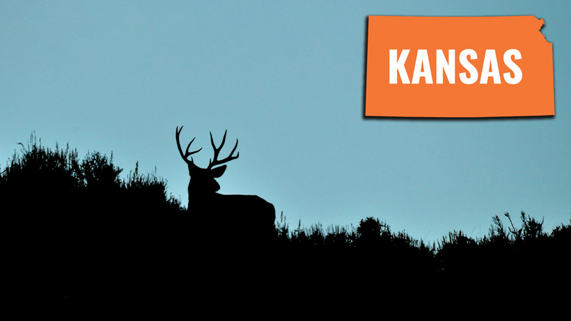 How to look up your Kansas preference points