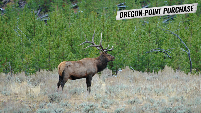 How to purchase Oregon hunting preference points