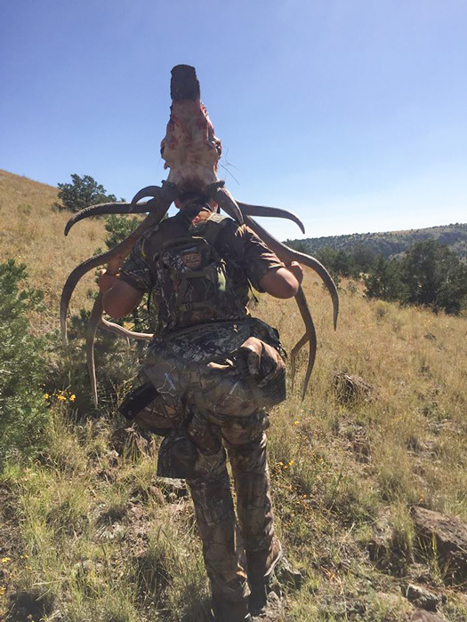 Hunter Agnetti packing out his New Mexico bull elk