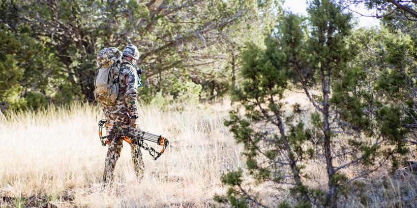 Hunting bucks in Arizona