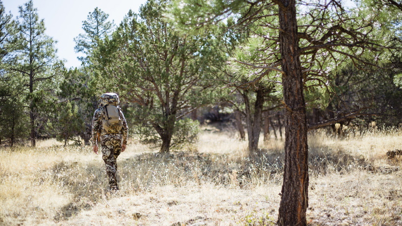 Hunting deer in the great state of Arizona