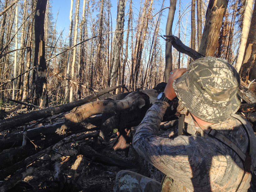Hunting from a ground blind