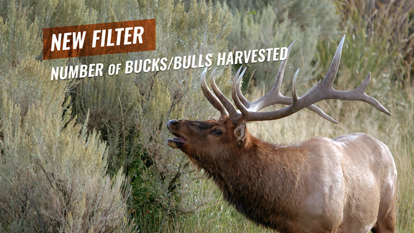INSIDER enhancement filter by number of bucks and bulls harvested in Montana