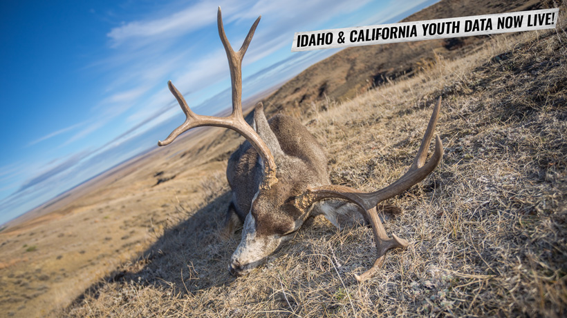 Idaho and California youth hunting research data now live on INSIDER