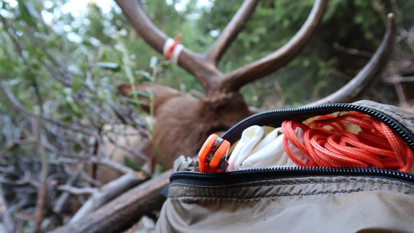 Including depth of field in hunting videos