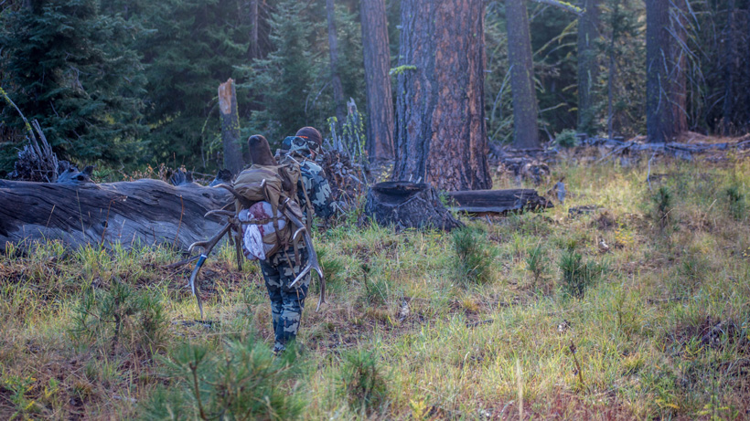 Jeff Roberts packing out his 2016 Washington archery bull elk