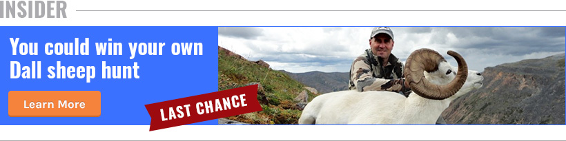 Join INSIDER and win a Dall sheep hunt