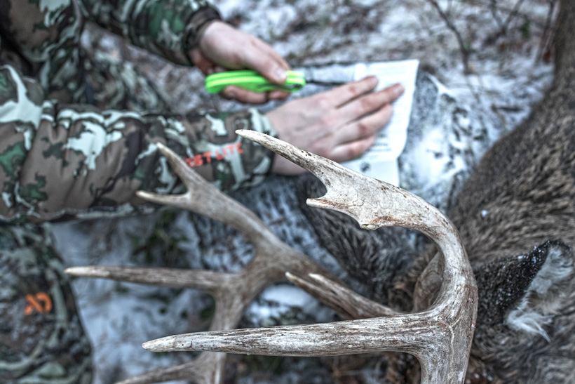 Jon Gabrio cutting out the tag on his archery whitetail buck from Washington