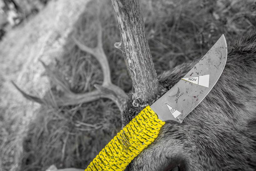 Kestrel knife end of a successful mule deer hunt