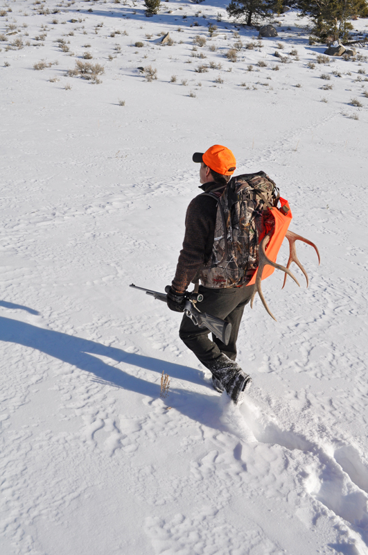 Packing out buck in snow