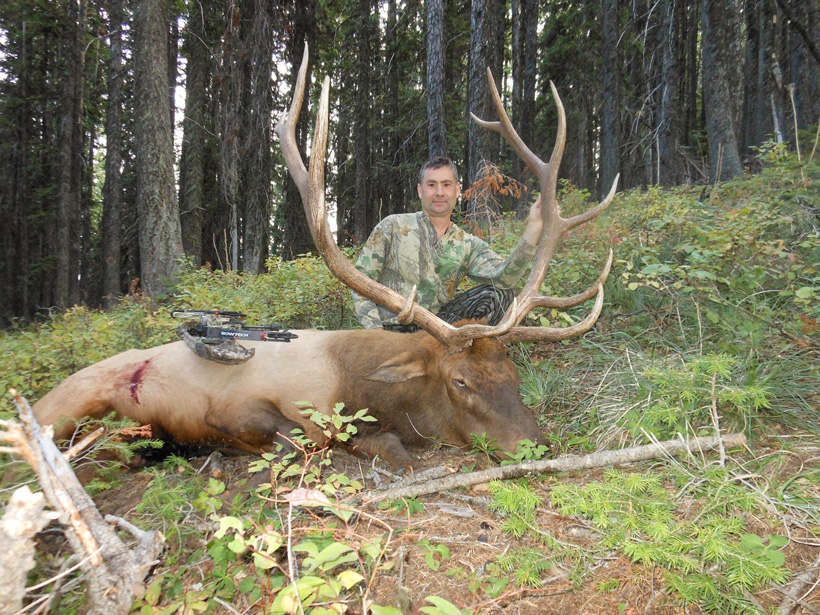 Mark ODay with his 2015 Montana bull elk