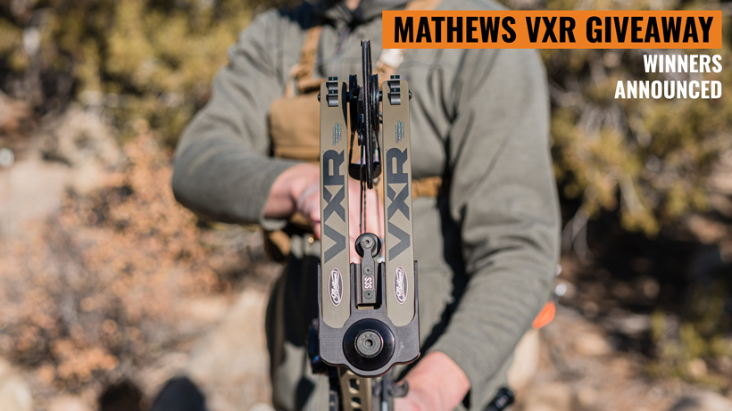 Mathews VXR winners announced