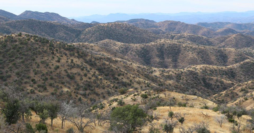 Mexico Coues deer hunt scenery