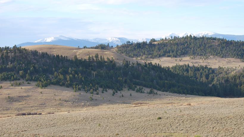 Montana elk hunting scenery