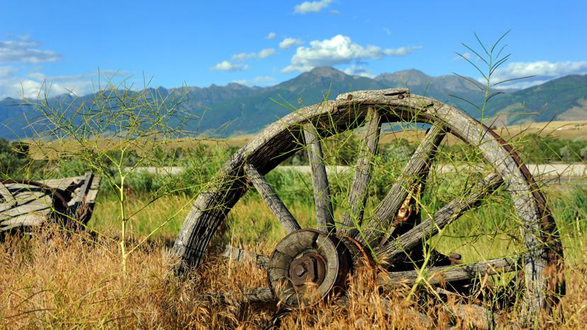 Montana Land