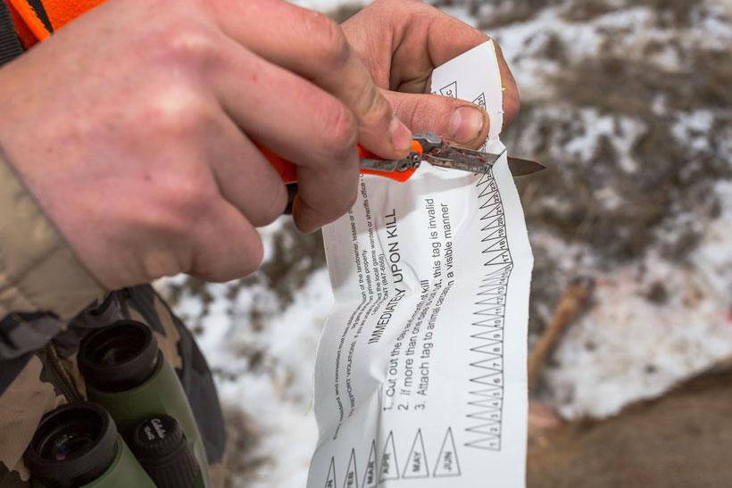 Montana tag validation