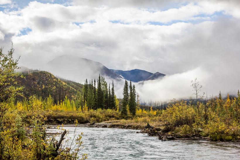 Moose hunting scenery