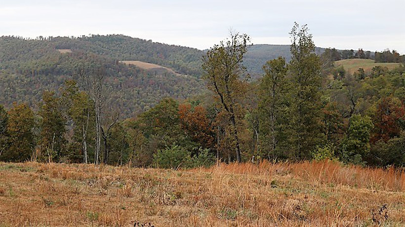 More Arkansas elk hunting terrain