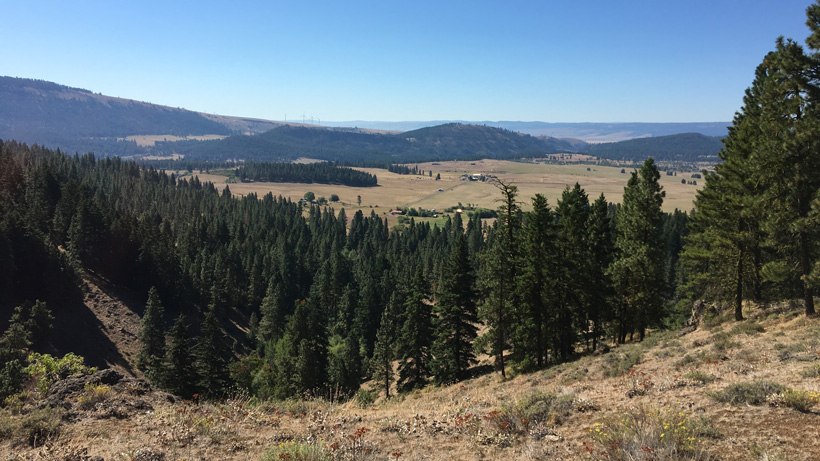 More scenery from a Washington elk hunt
