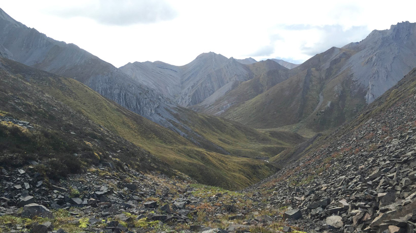Mountain terrain for Dall sheep