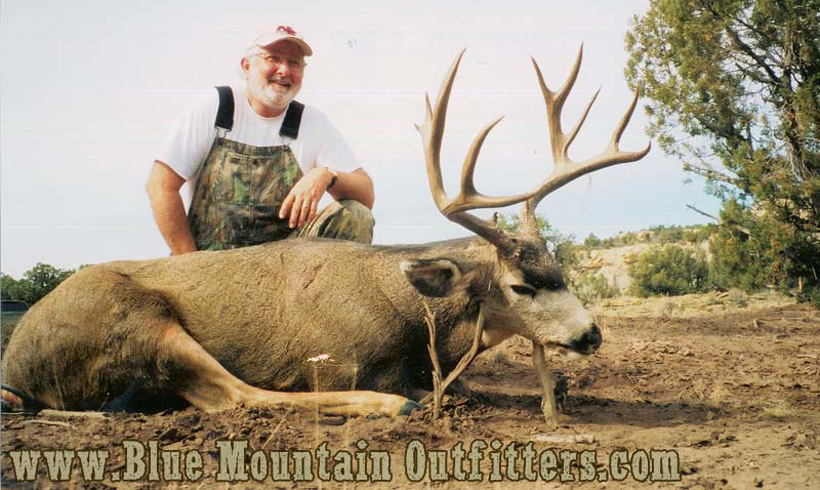 Mule deer taken with Blue Mountain Outfitters