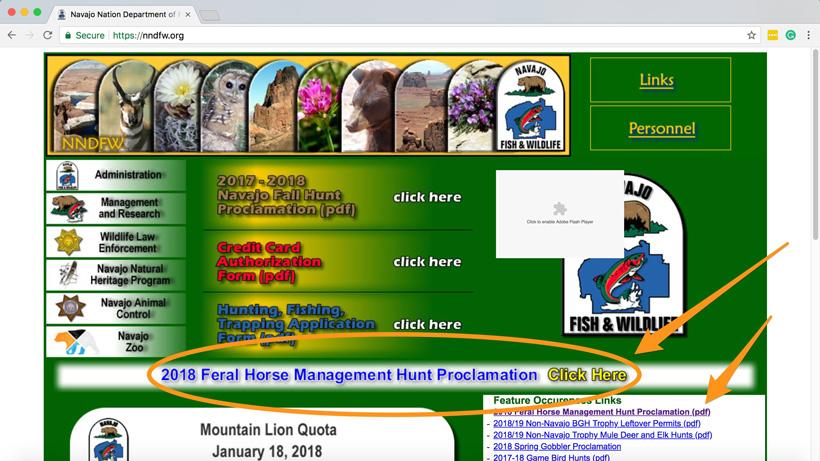 Navajo Nation horse hunt open