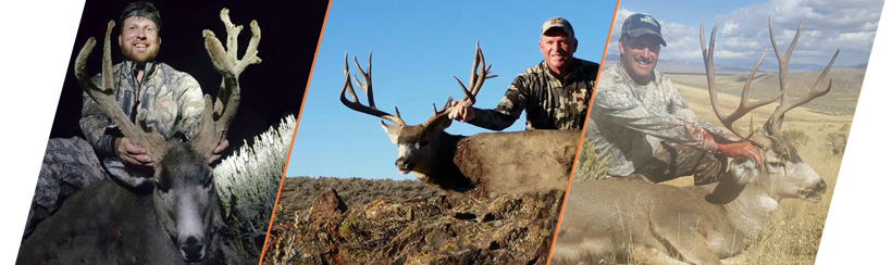 Nevada Outfitters 2016 mule deer harvest photo sample