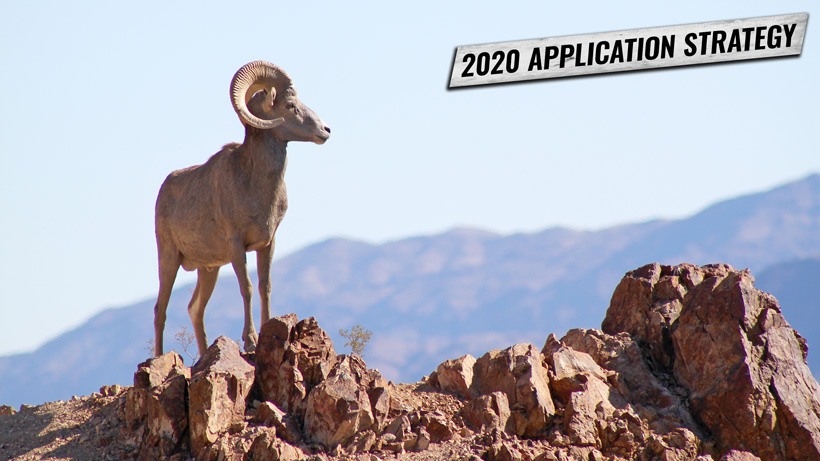 NEVADA'S BIGHORN SHEEP & MOUNTAIN GOAT APPLICATION STRATEGY 2020