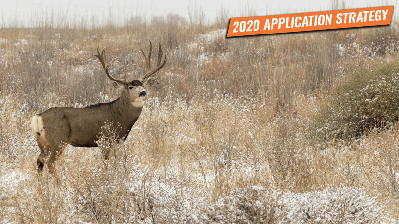 Nevada mule deer application strategy