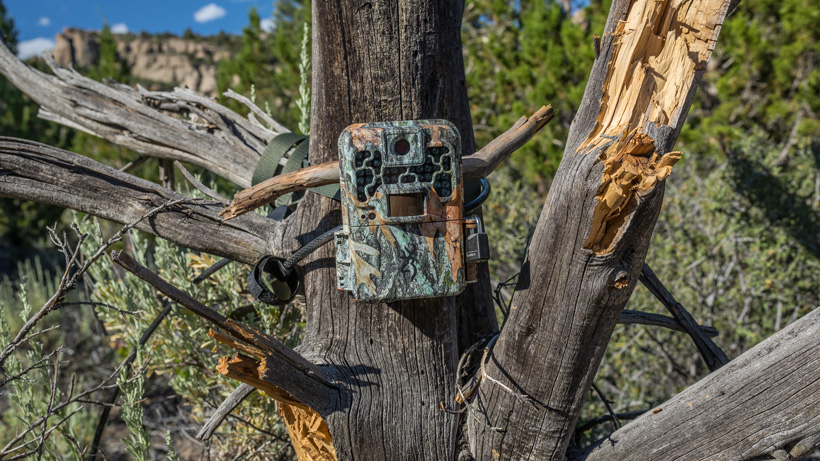Nevada new for 2018 trail camera law
