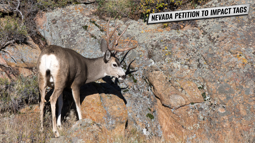 Nevada petition to give 25 percent of tags to max point holders
