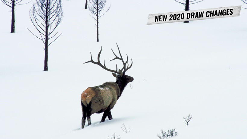 New 2020 Wyoming nonresident elk draw result date change
