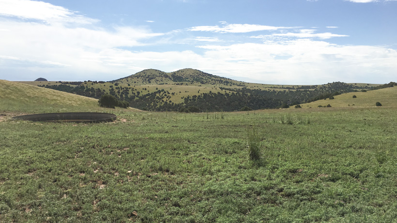 New Mexico antelope hunting terrain