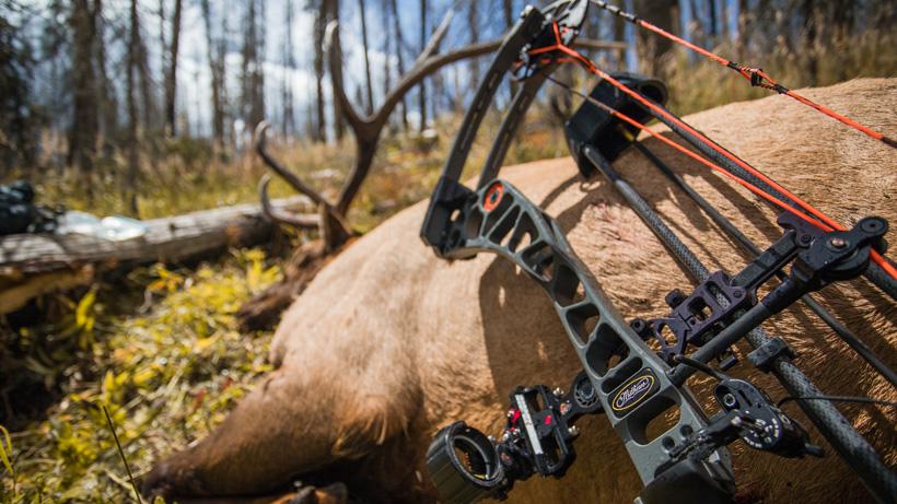 New Mexico archery bull elk taken with a Mathews Halon X