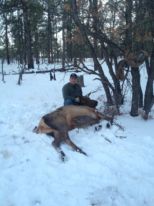 New Mexico cow elk harvest 2