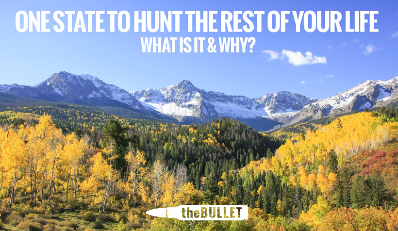 theBULLET - One state to hunt the rest of your life - What is it and why?