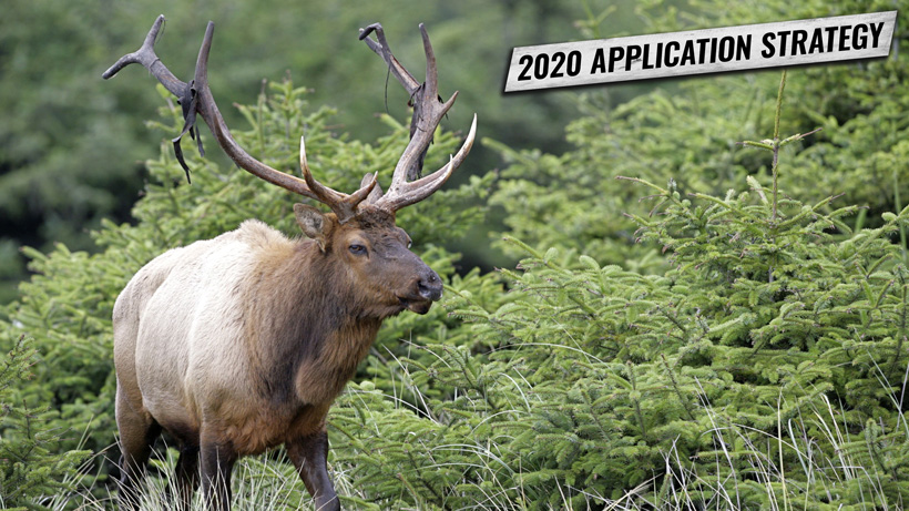 APPLICATION STRATEGY 2020: OREGON ELK AND ANTELOPE
