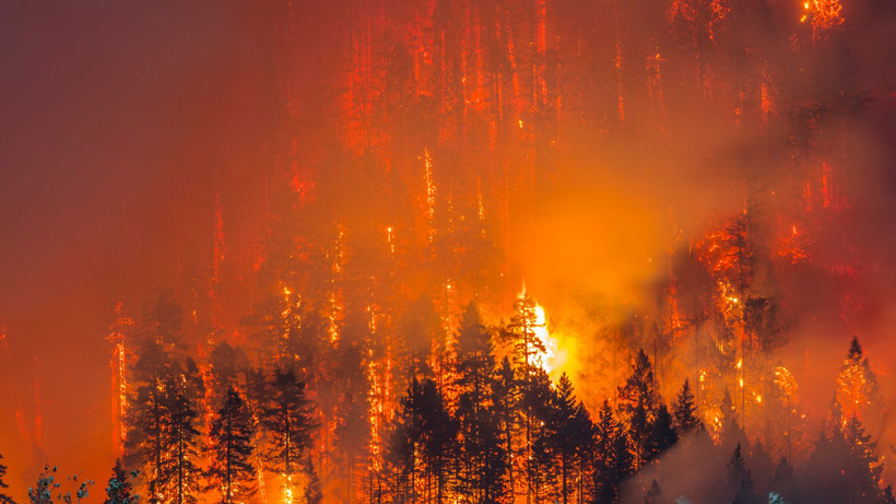 Hunters warned of possible dangers due to Oregon wildfires