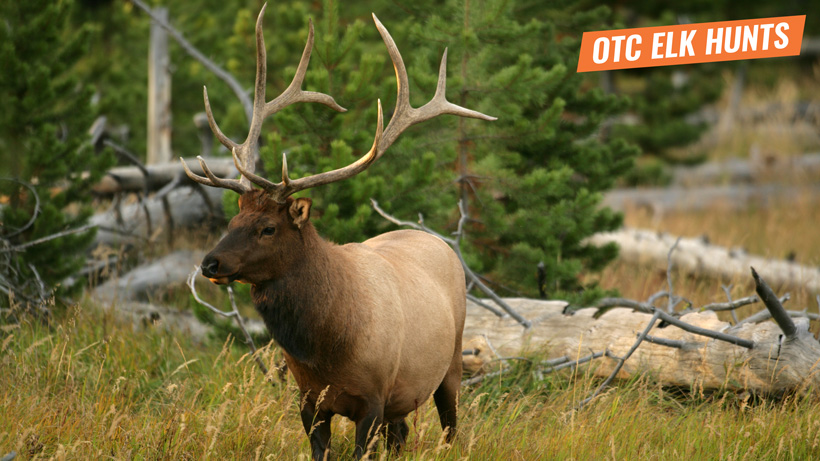 Over the counter elk hunt information