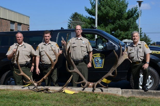 PA poached elk