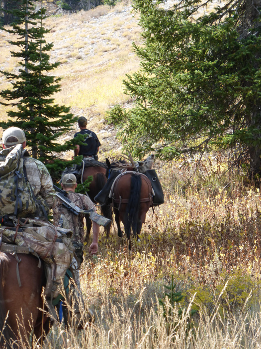 Packing a mule deer out of the mountains with horses