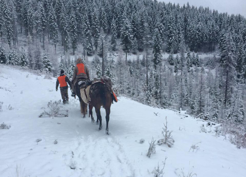 Packing into the backcountry on horses