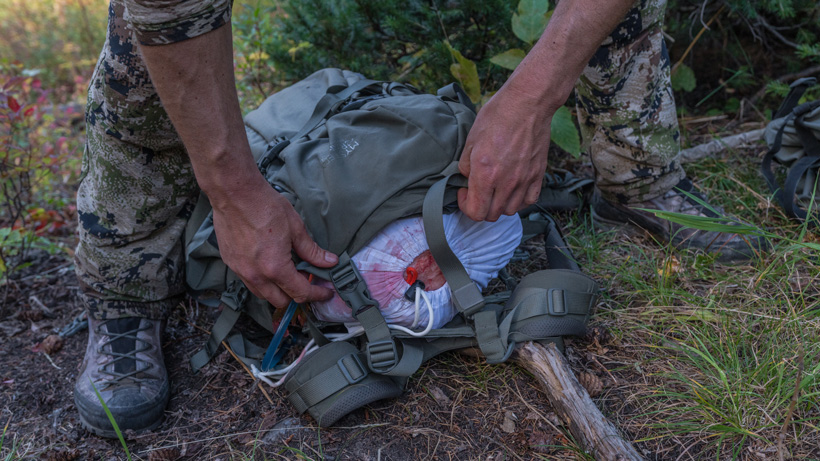 Packing out deboned elk meat in Mystery Ranch backpack