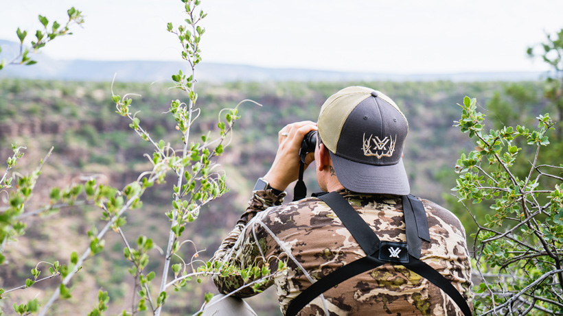 Scouting and glassing