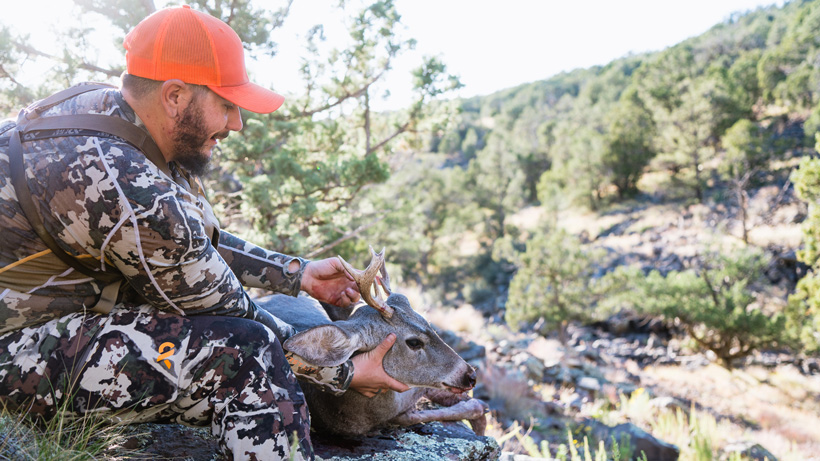 A few key tactics for hunting Coues deer